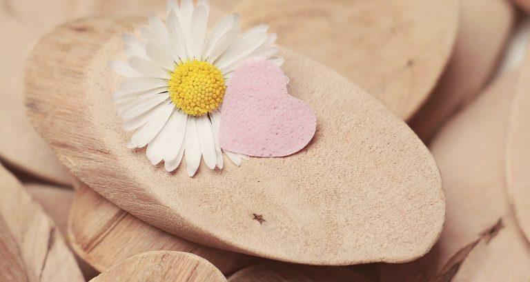 daisy, heart, herzchen